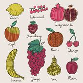 pic of banana  - Bright fruit and berries set in vector - JPG