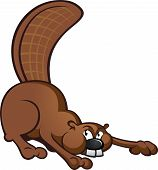 Beaver Cartoon Character