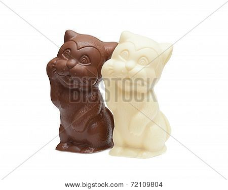 Image of delicious chocolate cats, close-up