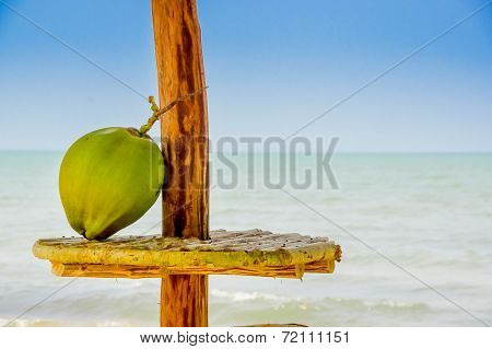 coconut on a table hut with the sea in background livingston guatemala