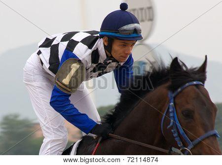 The Jockey.