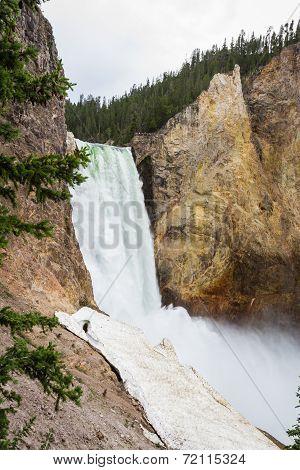 Lower Falls In Yellowstone
