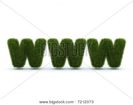 World wide web sign from grass