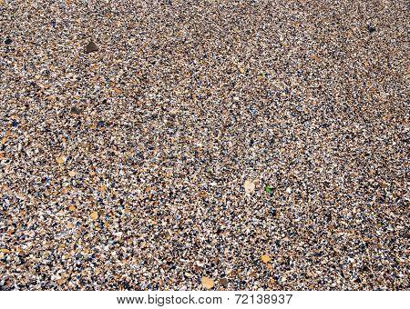 Sea Sand, Pebbles And Seashells