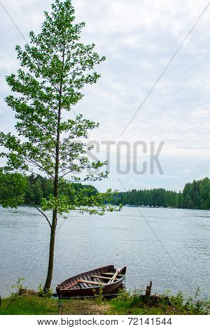 Rowboat Tied To Tree