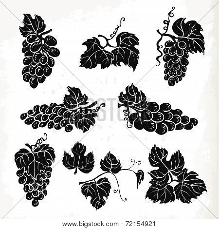 Collection Of Silhouette Grapes, Leaves And Branches. Vector Illustration