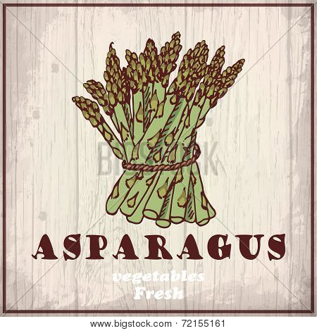 Fresh vegetables sketch background. Vintage hand drawing illustration of a asparagus