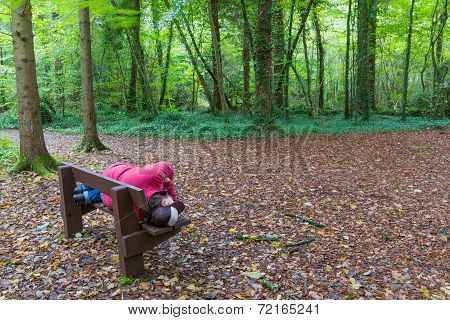Man Lying On A Bench In A Forest
