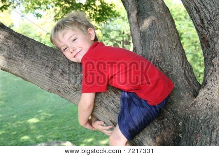 Smiling Boy Hugging A Tree