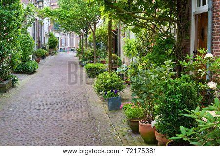 Harlem Small Street