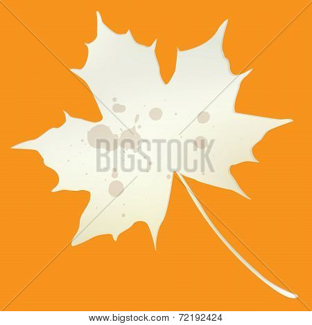 Vintage and grungy autumn leaf background