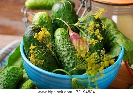 Fresh Cucumbers And Ingedients For Homemade Gherkin