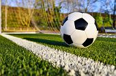 picture of football pitch  - Football lying on the green soccer pitch behind the goal line - JPG