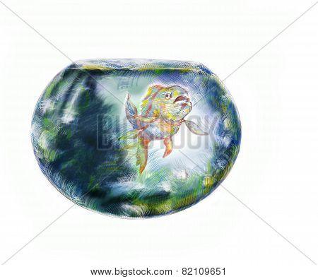 Fish And Fishbowl
