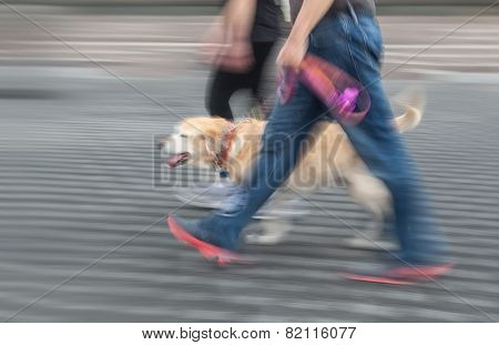 Man And Woman Walking With A Dog