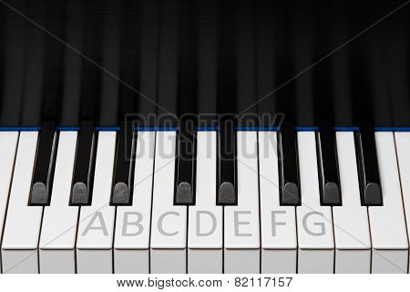 Piano Keyboard Octave