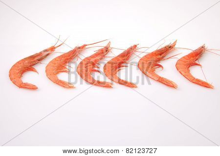 Row Of Spanish Rice Shrimps