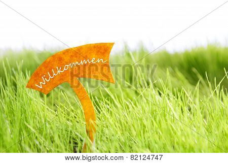 Label With German Willkommen Which Means Welcome On Green Grass