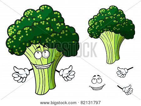Happy fresh cartoon broccoli giving a thumbs up