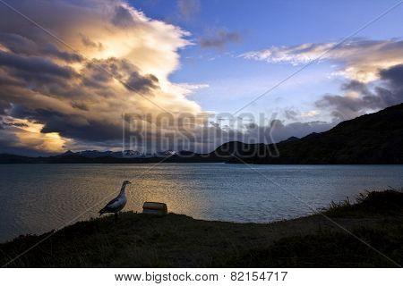 Sunset on the lake shore
