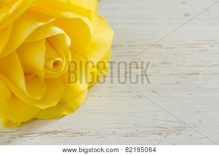 Beautiful yellow rose on a white shabby table