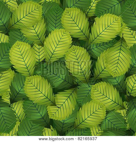 Seamless Spring Hazel Leaves