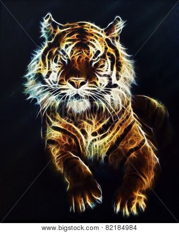 Tiger Fractal Beautiful Color Ornaments Background