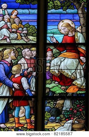 Feeding The Multitude - Stained Glass