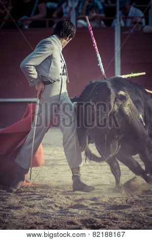 Entertainment, spectacle of bullfighting, where a bull fighting a bullfighter Spanish tradition