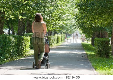 A Young Mother Walking With A Baby Carriage In The Park, Rear Vi