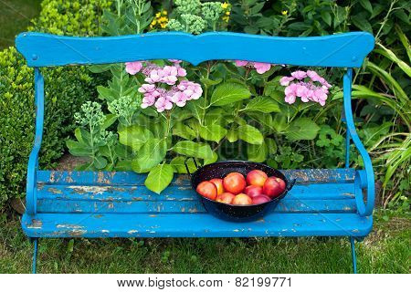 Apples On Bowl On Top Of Garden Bench