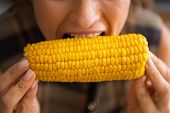 stock photo of boil  - Closeup on young housewife eating boiled corn - JPG