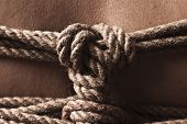 picture of shibari  - Detail of rope node on japanese bondage takate kote  - JPG