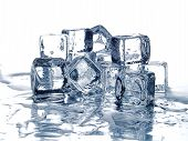 picture of ice cube  - Melting ice cubes in silver plate - JPG