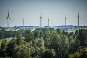 picture of wind-farm  - Wind farm photographed at wide range - JPG