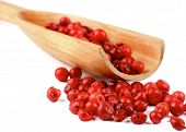 stock photo of peppercorns  - Wooden Spoon with Dry Pink and Red Peppercorns closeup on white background - JPG