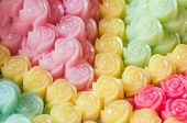 foto of chan  - Thai dessert Kanom Chan Layer soft pudding made as beauty rose flower - JPG