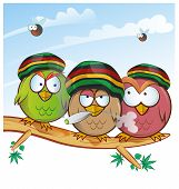 pic of jamaican  - jamaican owl group cartoon on sky background - JPG