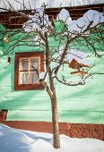 stock photo of chalet  - Bird house on the tree in front of chalet - JPG