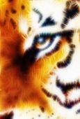 foto of tigers-eye  - Tiger eye ornament fractal orange colour background - JPG