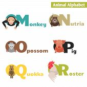 stock photo of quokka  - Animal alphabet M N O P Q R - JPG
