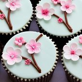 picture of sugarpaste  - Cupcakes decorated with cherry blossom flowers - JPG