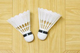 picture of game-cock  - equipment badminton Shutter Cock on a brown background - JPG