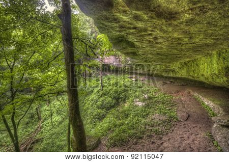 mossy rock overhang, Kentucky