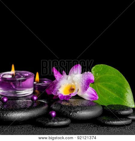 Spa Concept Of Purple Orchid Dendrobium, Leaf With Dew,  Candles And Pearl Beads  On Black Zen Stone