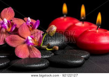 Beautiful Spa Background Of Blooming Twig Red Orchid Flower, Phalaenopsis With Dew And Candles On Ze