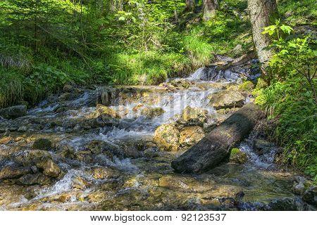 Torrent Bavaria Alps