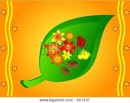 Indian Traditional Betel Leaves