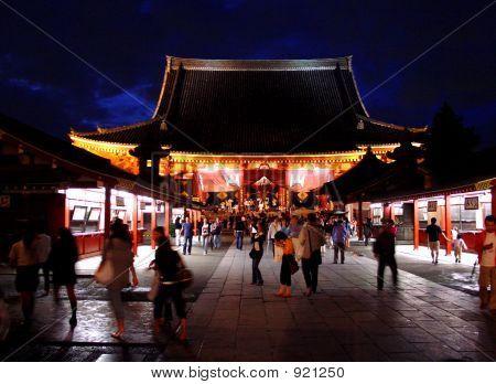 Asakusa Nights