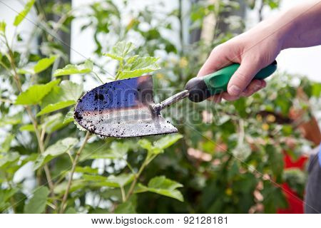 Woman With Gardening Trowel In Her Hand